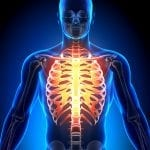 Why Allergic Shock Happens so Rapidly