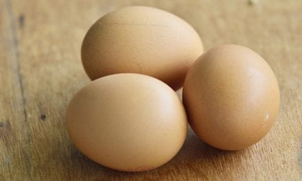 Patients with Egg Allergies Can Get the Flu Vaccine