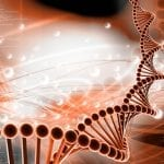Genetic Changes in Airways Precede Rapid Lung Function Decline in Smokers