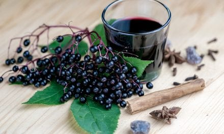 Black Elderberry May Reduce Upper Respiratory Symptoms