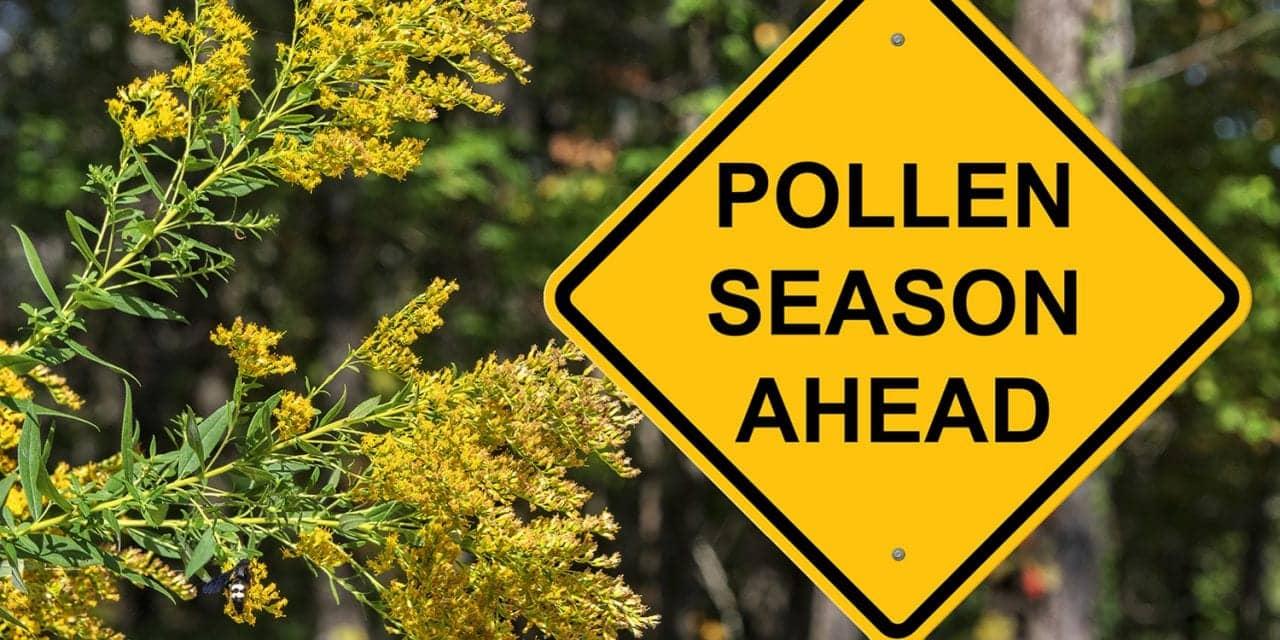 From Flu Season to Allergy Season