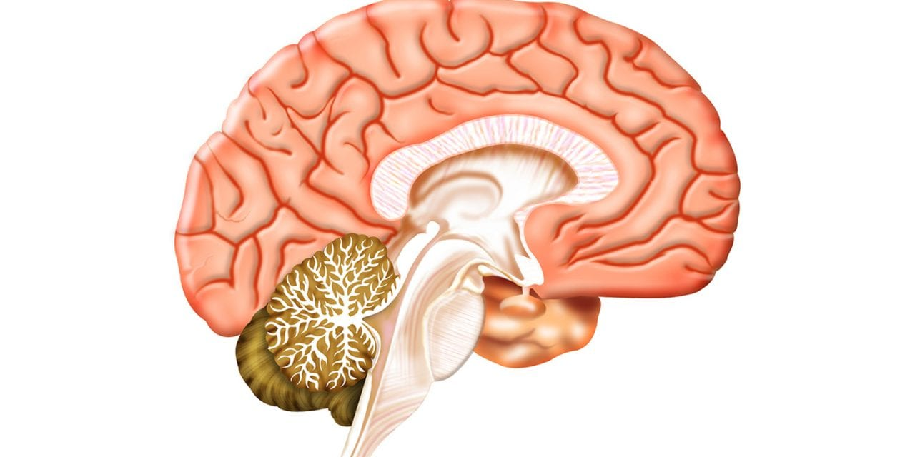 NSAID Therapy May Benefit COVID-19 Patients by Treating Inflammation in Brain