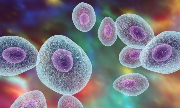 Scientists Uncover Structure of HMPV Enzyme