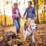 Dog Owners Had Better Outcomes After Cardiovascular Events
