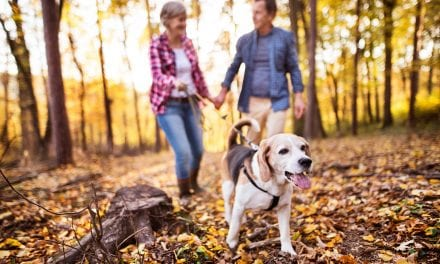 Study: Gene Therapy Could Help Treat Canine Lung Cancer