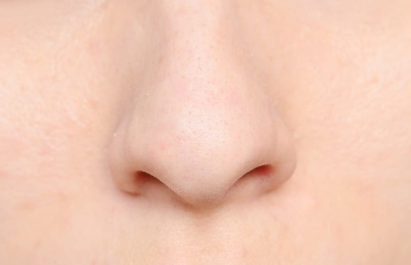 Hairy Cells in the Nose May Trigger Allergies