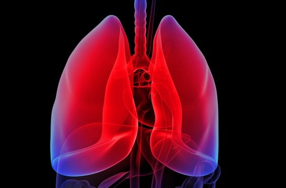 E-Cigarette Vapor Linked to Lung Cancer in Mice