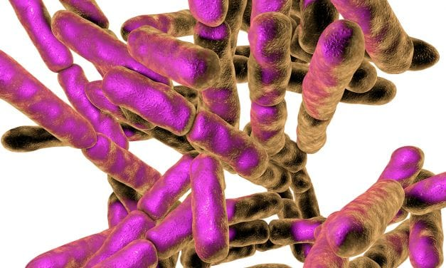 Respiratory Leaders Shine Light on Pneumonia Deaths