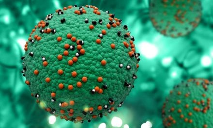 Scientists Sequence Genome of Measles Virus in 100-Year-Old Lung
