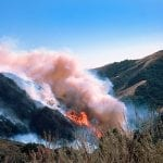 Wildfire Increased Pediatric ER Visits for Breathing Problems