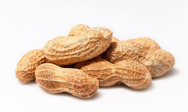 First Peanut Allergy Drug — Palforzia — Approved by FDA for Children 4-17