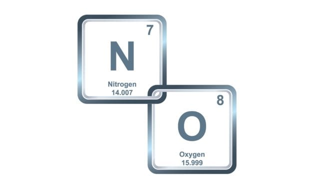 Inhaled Nitric Oxide: Past, Present, and Future