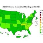 CDC: Influenza B Emerges as Dominant Flu Strain, Transmission Remains Low